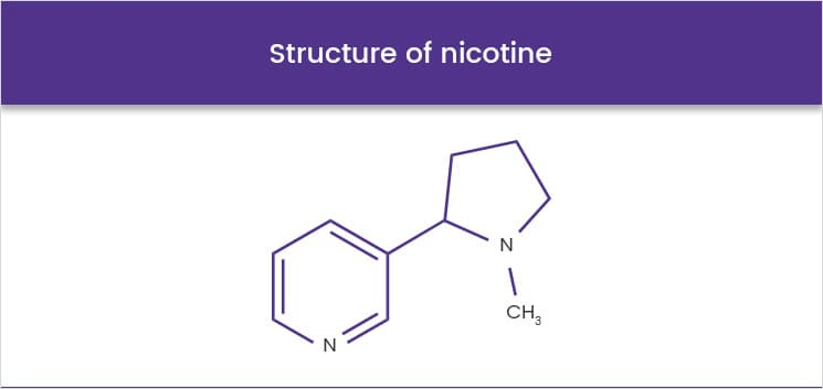 Structure of nicotine
