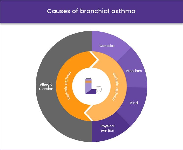 Causes of bronchial Asthma